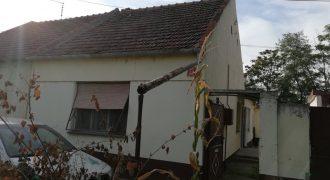 Kuća, Zeleno P.